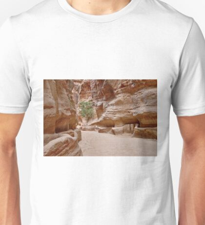 As-Siq or canyon in Nabataean ancient town Petra Unisex T-Shirt