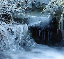 Icicles by johngs