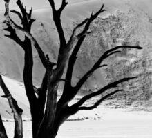 Dead Vlei with dead trees in desert landscape of Namib BW 01 Sticker