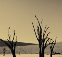 Dead Vlei with dead trees in desert landscape of Namib BW 02 Sticker