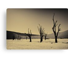 Dead Vlei with dead trees in desert landscape of Namib BW 02 Canvas Print