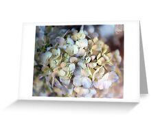 wedding flowers 5 Greeting Card