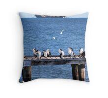 Cormorants, Cervantes, Western Australia Throw Pillow