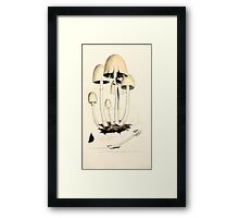 Coloured figures of English fungi or mushrooms James Sowerby 1809 0371 Framed Print