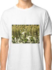 Grain Sorghum Classic T-Shirt
