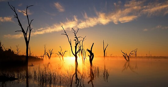 Lake Mulwala impression 4 by Hans Kawitzki