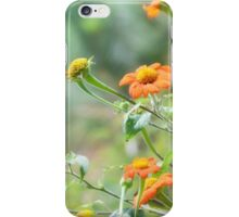 Orange wildflowers CALIFORNIA  iPhone Case/Skin