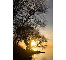 Early Gold Through the Willow Branches - A Sunrise on the Shore of Lake Ontario Photographic Print