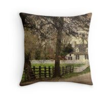 Williamsburg Home Throw Pillow