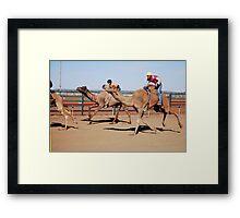 Racing Camels Framed Print