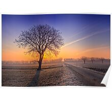 ~Frosty Morning~ Poster