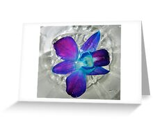 Floating Orchid Greeting Card