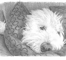 sheepdog in pillows drawing by Mike Theuer