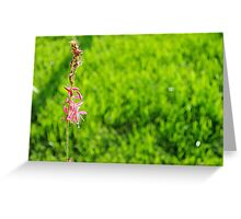 The undead deceased flower that still lives Greeting Card