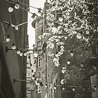 Lamps in the Sun  by Errne