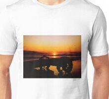 Sunset on Lake Wahtoponak Unisex T-Shirt