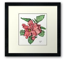 Contour Double Hibiscus Framed Print