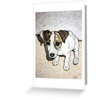 Dixie Belle Greeting Card