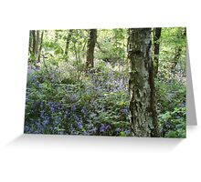 Tyle-Y-Coch Bluebells. Greeting Card