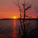 Dawn on Devil's Lake USA by Larry Trupp