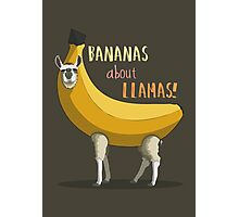 Bananas About Llamas! Photographic Print