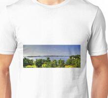 Lake of the Woods (Panorama) Unisex T-Shirt
