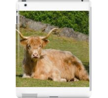 Resting Highlander iPad Case/Skin