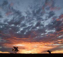 Windorah sunset- Cooper Creek by Lauren0294
