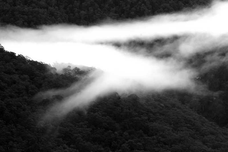 Mist in the Valley by Geoff Smith