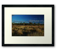 An Australian Outback Bush Scene Framed Print