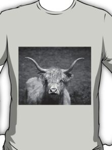 Curious Highlander Black And White T-Shirt