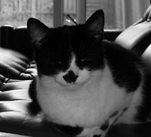 Milly chilling 70s style by Thomas Scurr