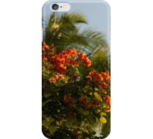 Bougainvilleas and Palm Trees Swaying in the Wind in Waikiki, Honolulu, Hawaii iPhone Case/Skin