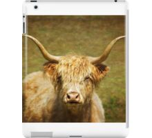 Curious Highlander Colour iPad Case/Skin