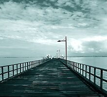 Woody Point Jetty Queensland by mackasenior