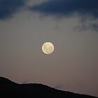 Dark Moon - Haarlem, South Africa by Nina du Preez