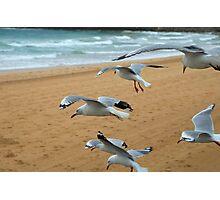 Squadron landing Photographic Print