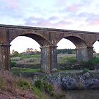 Malmsbury Viaduct #2 by Meg Hart