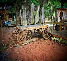 The Old Little Wagon by OURPIKS