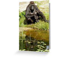 Western lowland gorilla Greeting Card