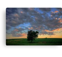 Nebraska Sky 3 Canvas Print