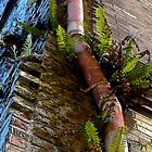If Your Building Is Grungy, Add a Pink Pipe and Some Nice Plants by paintingsheep