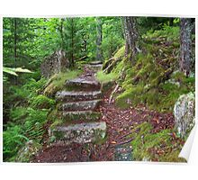 Stairs to Beech Mountain Poster