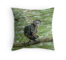 Wood Duck...Out On A Limb Throw Pillow