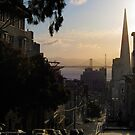 San Francisco Morning Calm by David Denny