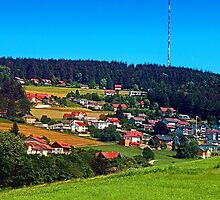 Green grass, the village and a transmitter pole by Patrick Jobst