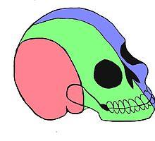 Tri-Colored Skull by metogenesis