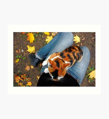 cat sitting on legs in autumn Art Print