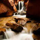 Kanarra Waterfall by Sam Scholes