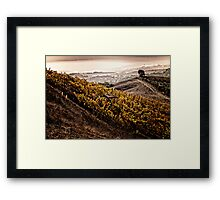 Rubissow Winery Framed Print